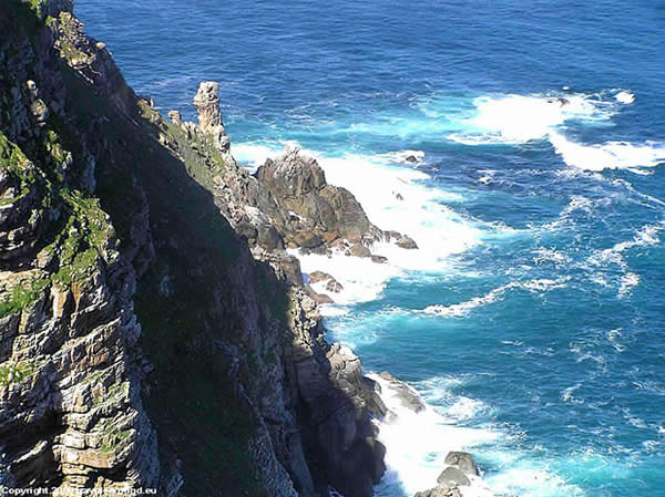 The Ultimate Cape Point Tour