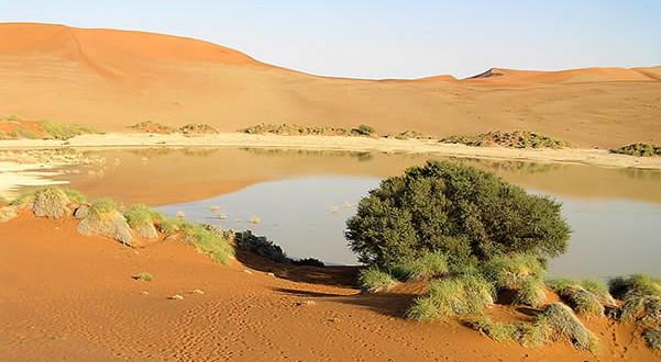Sossusvlei, Désert du Namib, Namib-Naukluft, Namibie. Author and Copyright Marco Ramerini