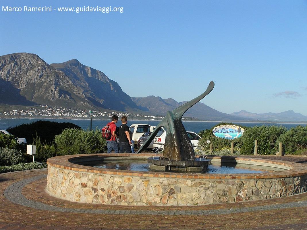 Hermanus, Afrique du Sud. Auteur et Copyright Marco Ramerini