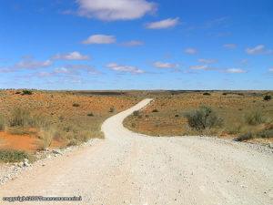 Désert du Kalahari, Kgalagadi Transfrontier Park, Afrique du Sud. Auteur et Copyright Marco Ramerini