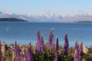 Lake Tekapo, Nouvelle-Zélande. Auteur et Copyright Marco Ramerini