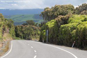 Route le long des Catlins, Nouvelle-Zélande. Auteur et Copyright Marco Ramerini